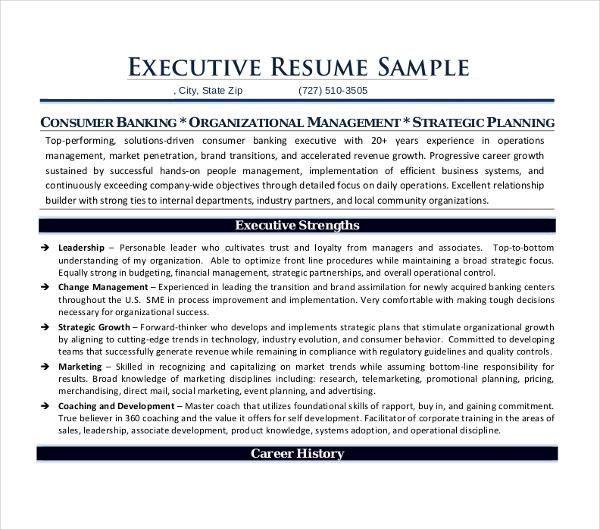 sample professional executive resume