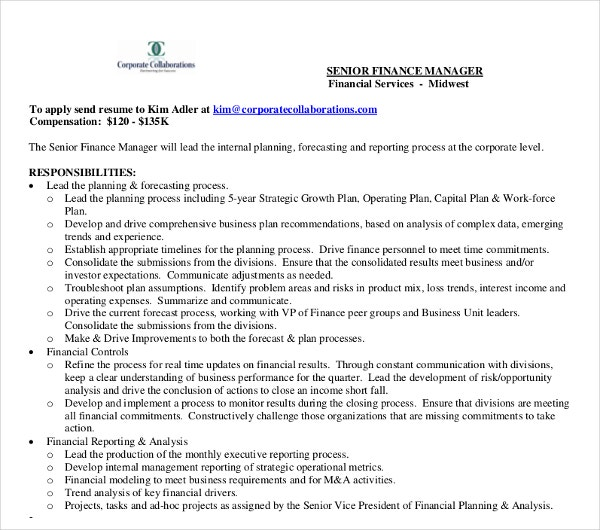 senior finance manager curriculum vitae