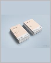 stylish-artist-business-card