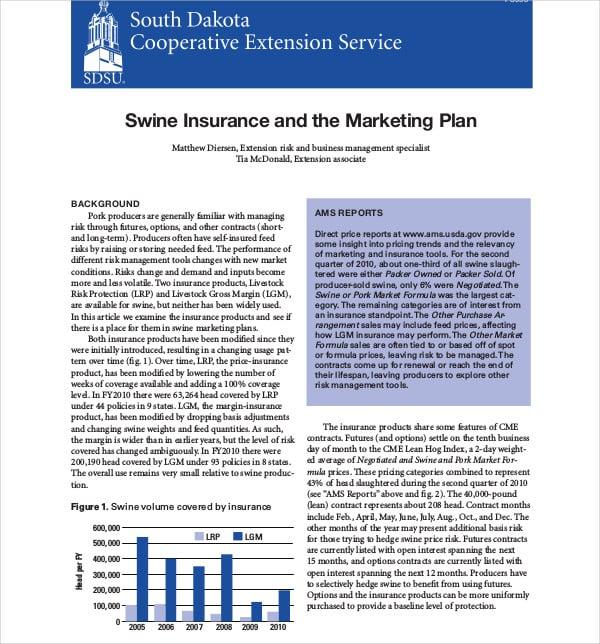 11+ Insurance Marketing Plan Templates - PDF, Docs | Free ...