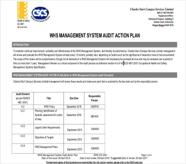 system management audit action plan