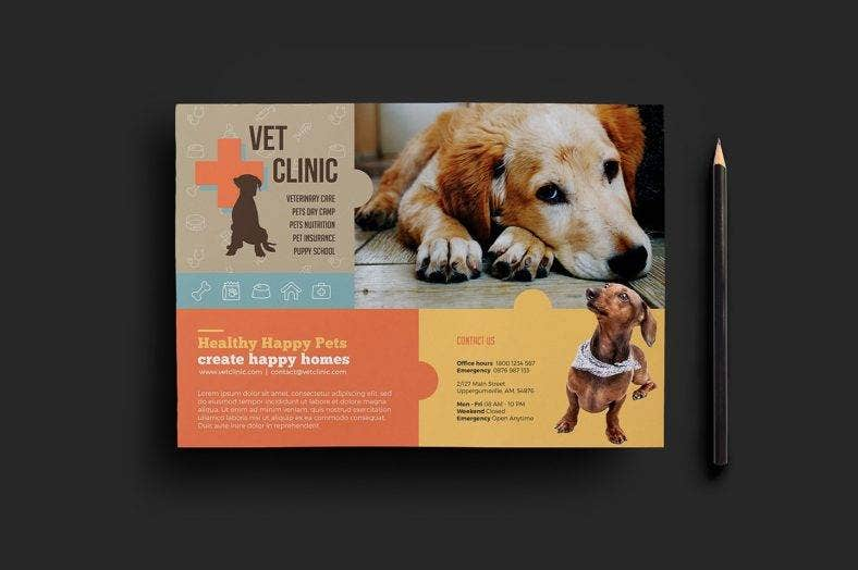vet clinic pet flyer 788x524