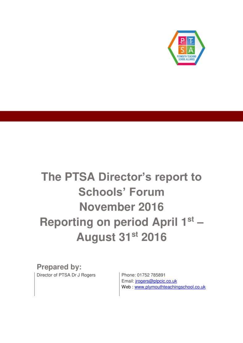 directors-report-01