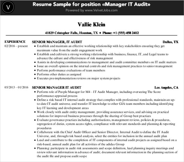 manager audit it resume