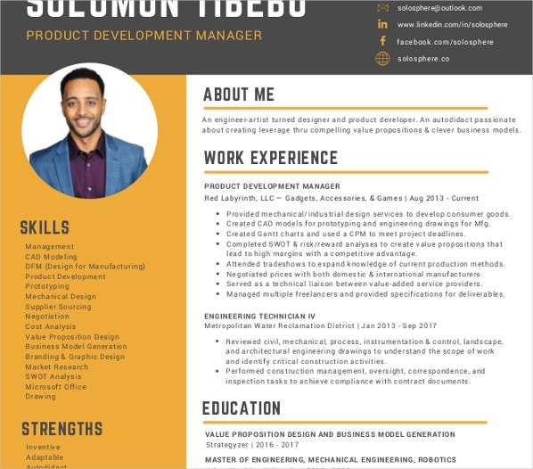 10 product manager resume templates pdf doc free premium