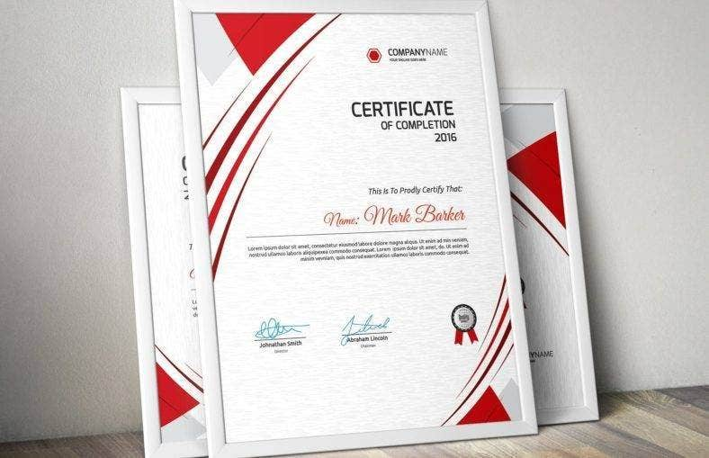 Professional Training Completion Certificate