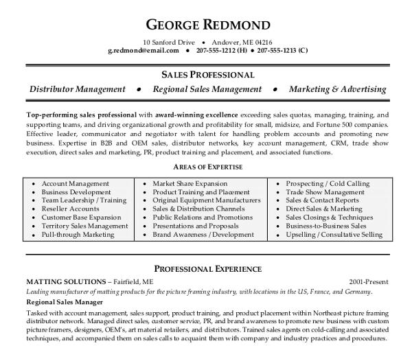 regional sale resume