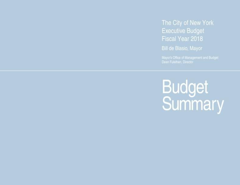 executive-budget-01