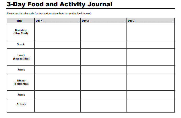 3-day-food-journal