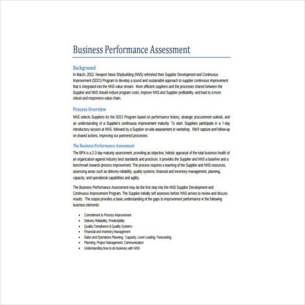 Business Performance Assessment Form