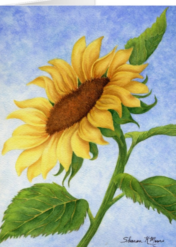 Sunflower Nature Greeting Card