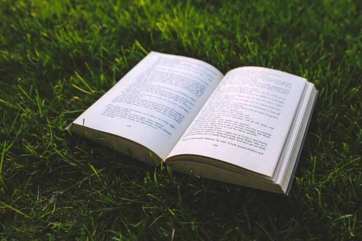 nature grass green book e1522650019409