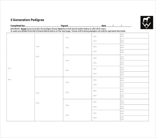 5 Generation Pedigree Chart Template