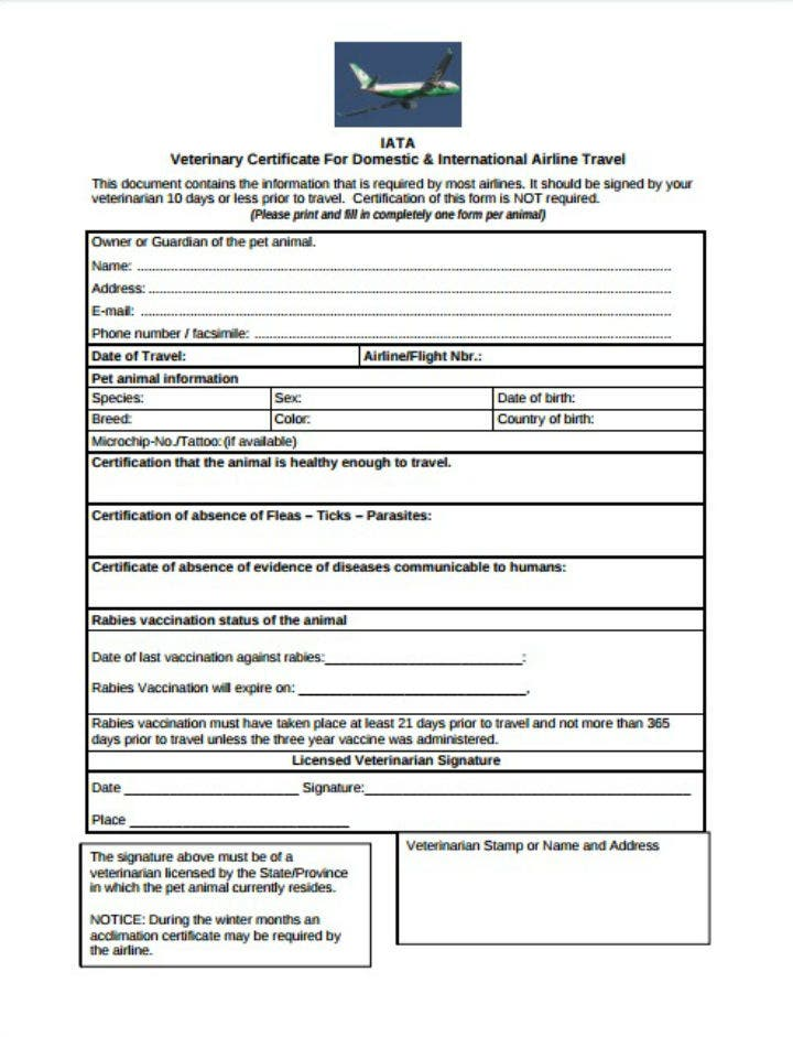 air-travel-pet-veterinary-birth-certificate-template-airline-certificate