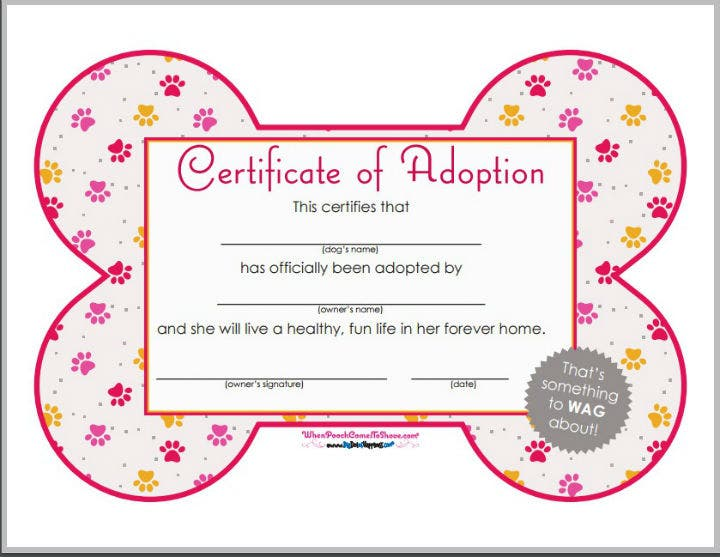 12 pet birth certificate designs templates pdf psd for Walking certificate templates