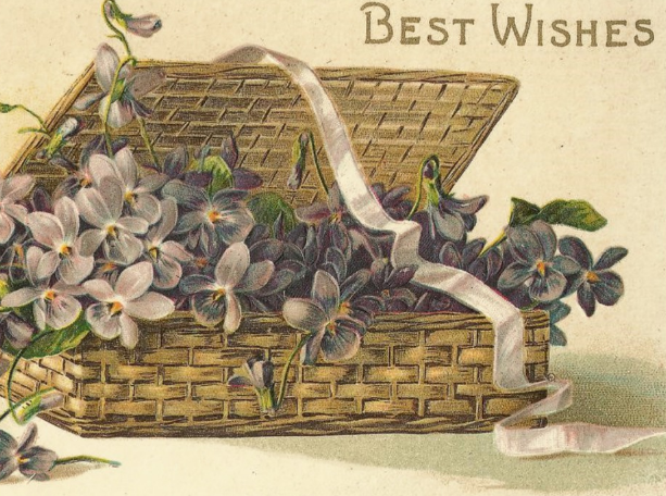 Flowers Best Wishes Card