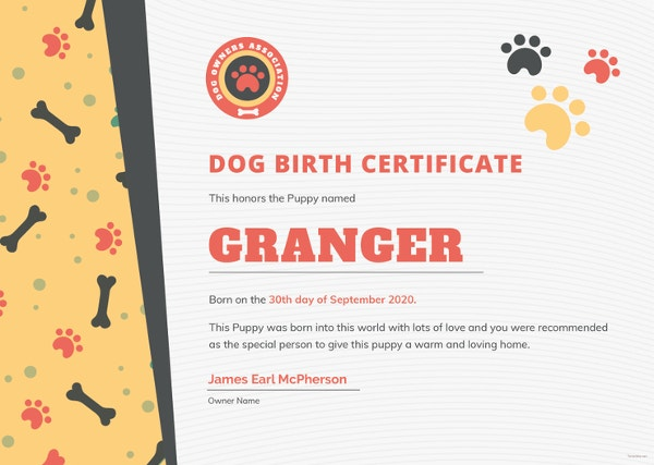 free-dog-birth-certificate-template