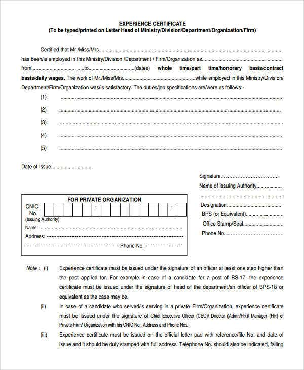 job experience letter format template