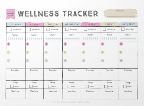 Mental-Health-and-Wellness-Tracker