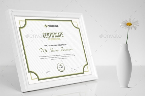 simple-and-minimal-design-multipurpose-certificate