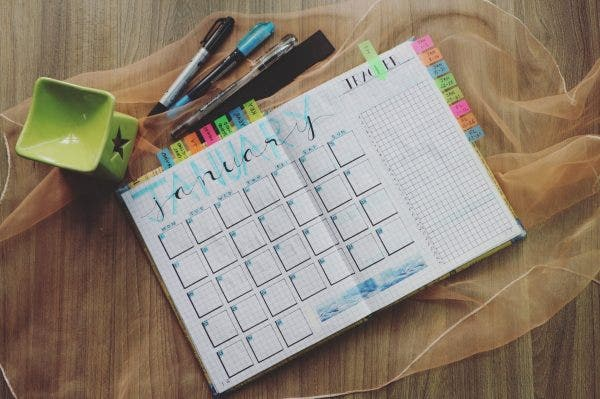 photo regarding Free Printable Teacher Planner Pdf identified as 6+ Trainer Planner Templates - PDF Free of charge Top quality Templates