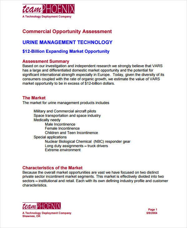 commercial market opportunity assessment1