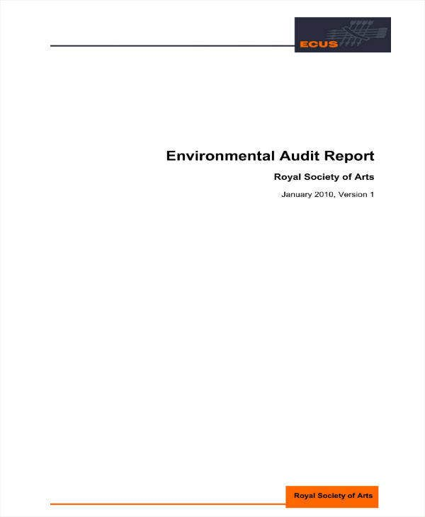 environmental audit report sample