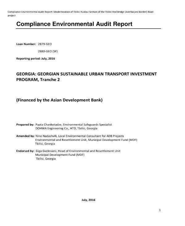 environmental audit report