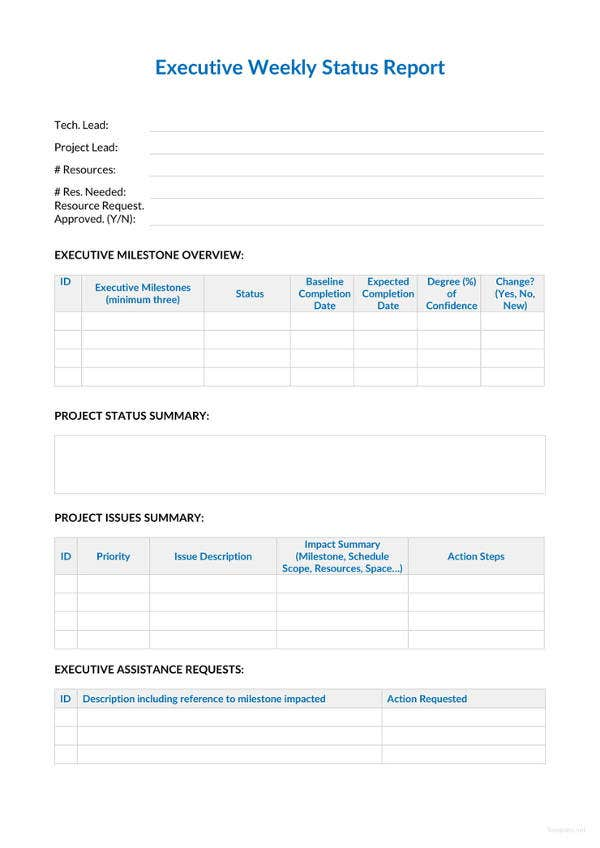 executive weekly status report template - Weekly Report Template