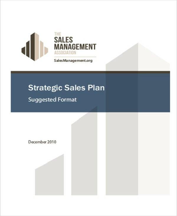 financial strategic sales plan sample