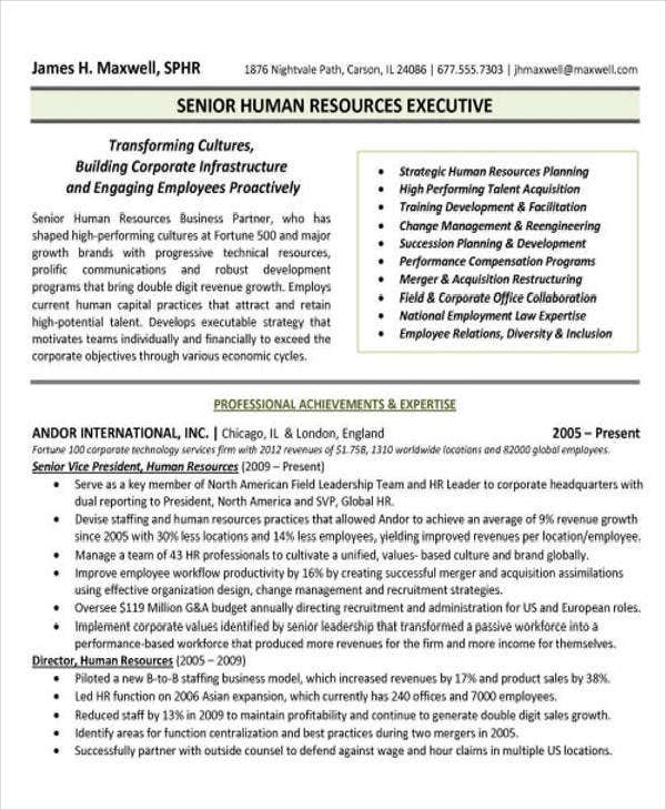 HR Executive CV Example
