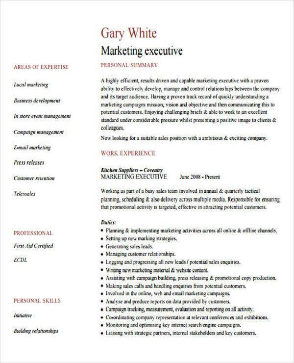 marketing executive cv2