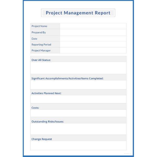 project management report