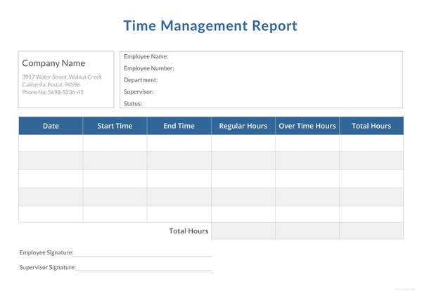time management report