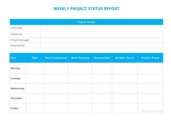 weekly project status report1