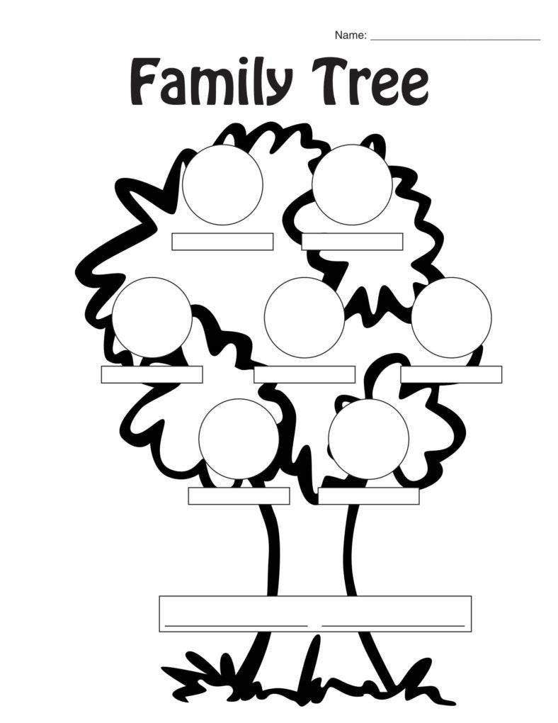 Worksheet Family Tree Sample
