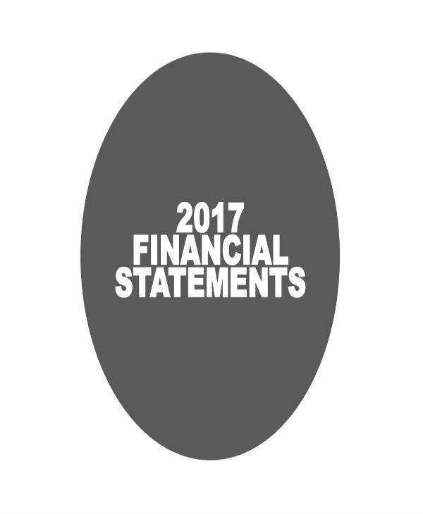 2017 financial statements agm 01