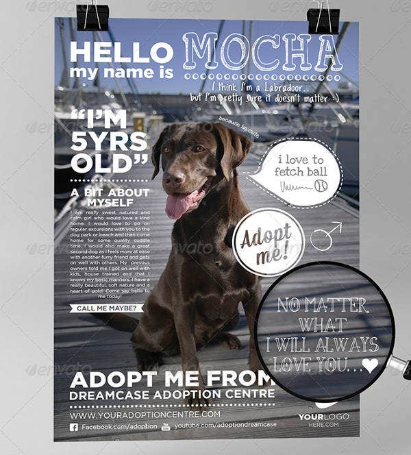 Animals Adopt Flyer Design
