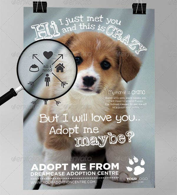 Animals Adoption Flyer Sample