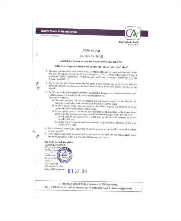 annual tax audit report template