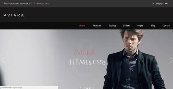 aviara responsive html5 template