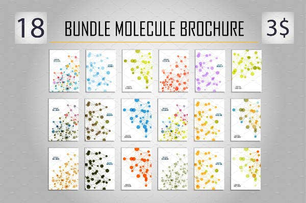 bundle-molecule-brochure