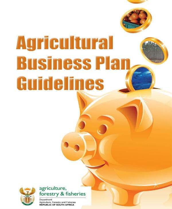 business plan guidelines 01