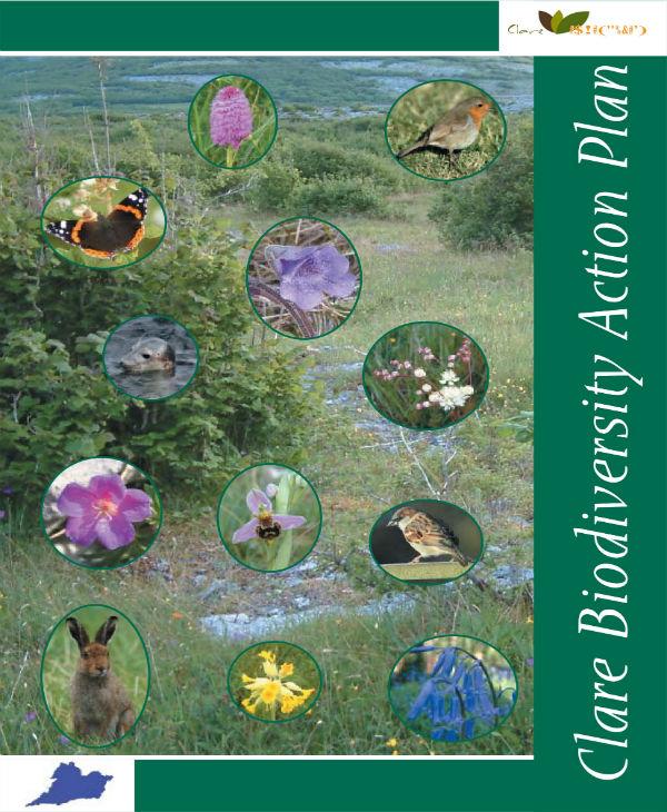 clare biodiversity action plan 01