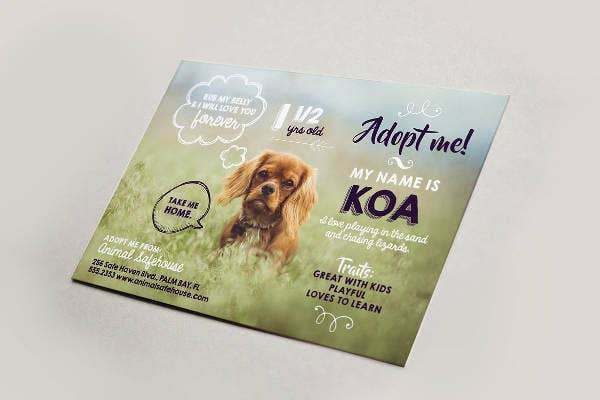 Cute Pet Adoption Flyer Example