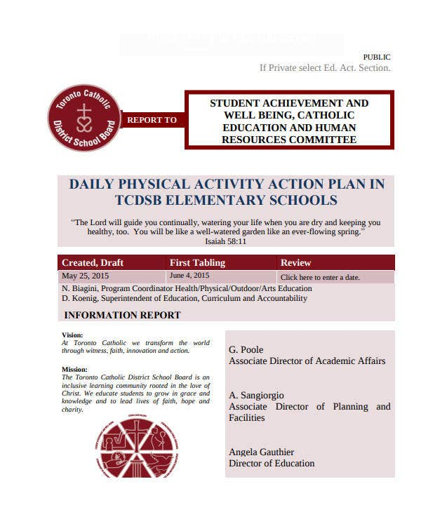 daily physical activity action plan