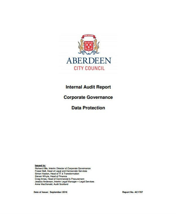 how to write a compelling data audit report free premium templates