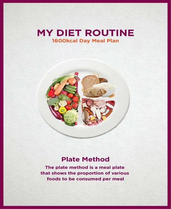 Day Meal Plan Sample