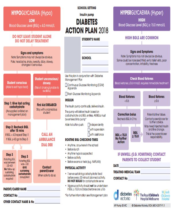 14  diabetes action plan templates