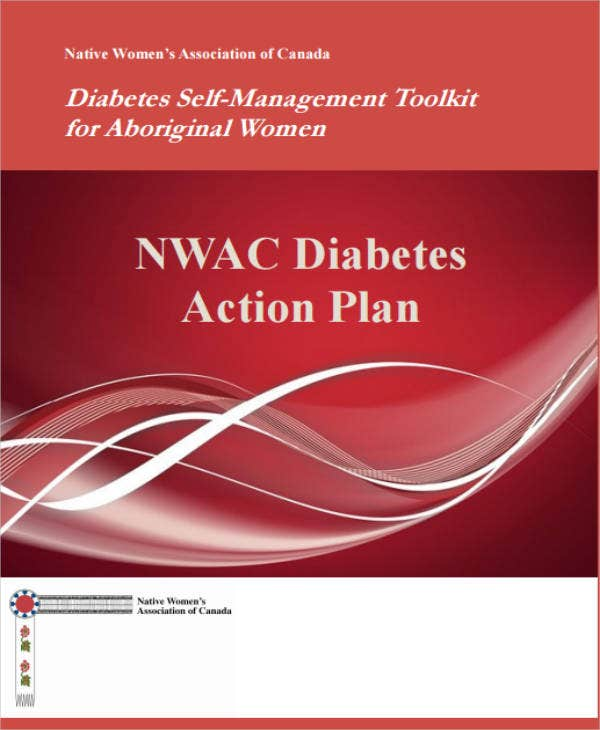 Diabetes Action Plan Example